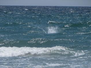 Second Splash
