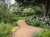 Scented plantings, Botanical Garden
